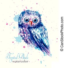 Owl bird colorful watercolor Vector. Blue cute bird with paint stains background