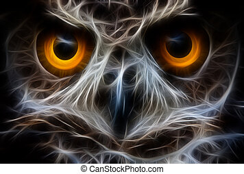 Owl Bird Face Close Up - Owls Are The Order Strigiformes...