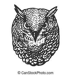 Owl bird head animal engraving vector