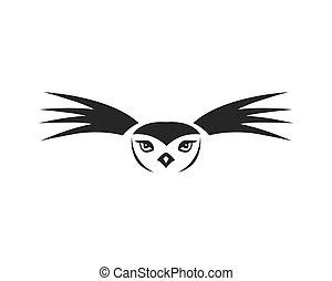 Owl bird logo design vector illustration