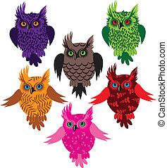 Owl bird set