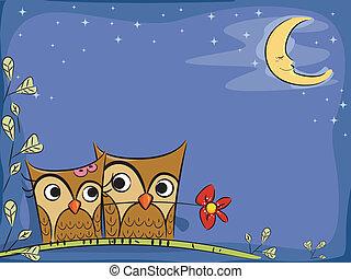 Owl Couple Background