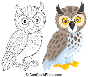 Owl - long-eared owl, color and black-and-white outline...
