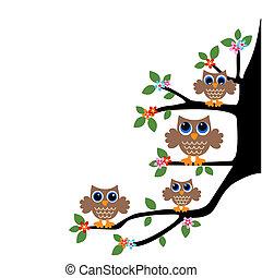 owl family team