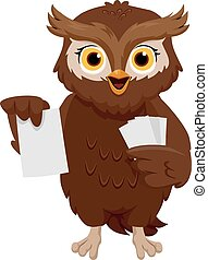 Owl Flash Cards