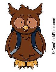 Owl go to school