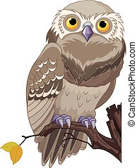 Illustration of an owl sits on a branch