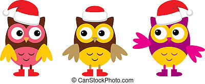 Owl in Christmas hats