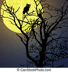 owl in front of moon