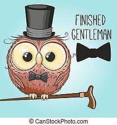 Owl in hat