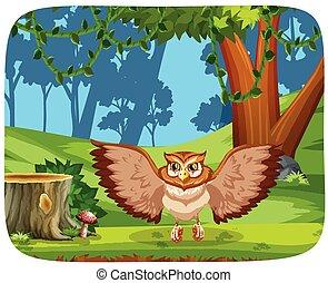Owl in the jungle