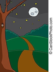 Owl in Tree at Night