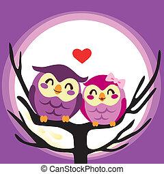 Owl Love Couple
