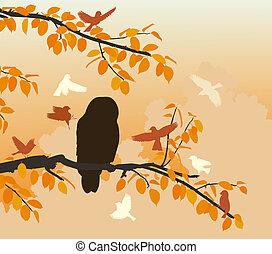 Owl mobbed - Editable vector illustration of songbirds...