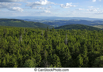 Owl Mountains Landscape seen from Big Owl peak, Lower Silesian, Poland