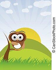 Owl on the three