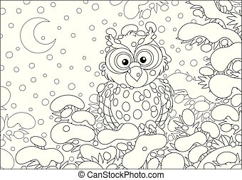 Owl perched on a snowy fir - Thoughtful owlet on a snow-...