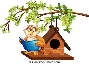 Owl reading book by the birdhouse