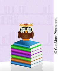 owl reads books