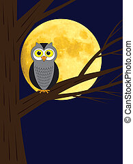 owl sitting on a branch of tree