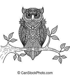 Owl sitting on branch