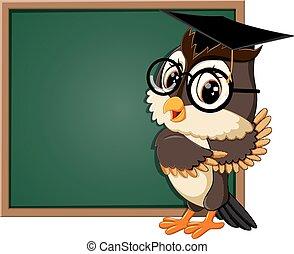 Owl teacher at blackboardnt