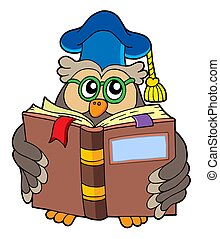 Owl teacher reading book - isolated illustration.