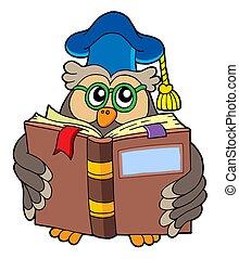 Owl teacher reading book - isolated illustration.