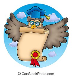 Owl teacher with diploma on sky