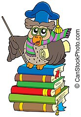 Owl teacher with parchment on books