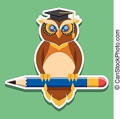 Owl vector flat illustration