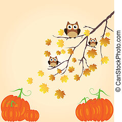 Owls and pumpkins