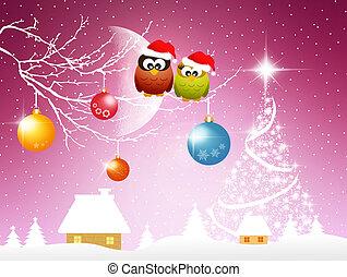 Owls at Christmas