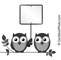 Owls Blank Sign - Owls with blank sign copy space for own...