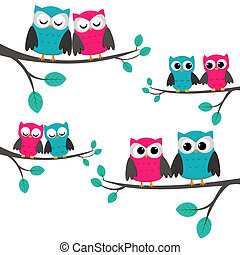 owls couples