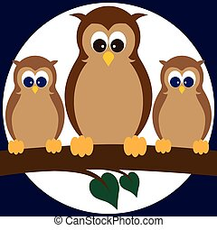 Owls on a Limb