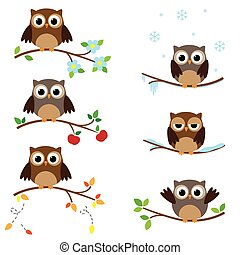 Owls on branches