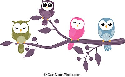 owls sitting on branches