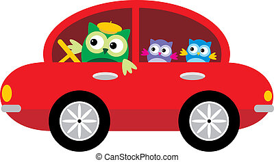 Owls Traveling By Car