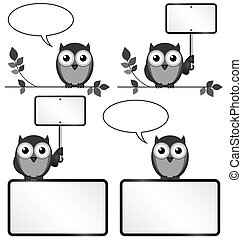 Owls with copy space - Monochrome owls with copy space for...