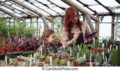 Owner of hothouse is doing inventory counting plants and working with tablet while her curious daughter is touching flowers talking with her mom and laughing.