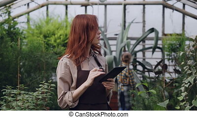 Owner of spacious greenhouse is doing inventory checking and...