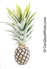 owoc, ananas, odizolowany