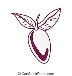 owoc, odizolowany, mangowiec, ikona, świeży