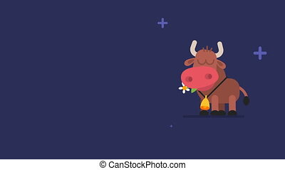 Ox and Flickering Stars Funny Animal Character Chinese Horoscope. Motion Graphics
