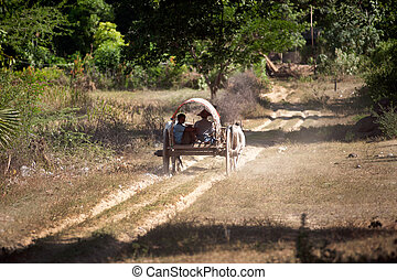 Ox cart to the village near Mingun Pagoda, Myanmar.