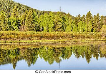 Oxbow Bend reflection, Grand Teton National Park