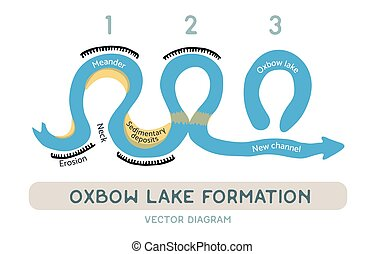 Oxbow lake formation, vector diagram - Oxbow lake formation...