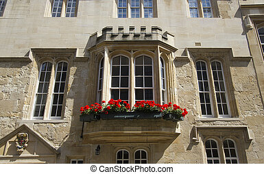 oxford university, ventana
