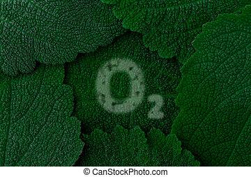 Oxygen, O2. Dark green leaves background. Close up - Oxygen...